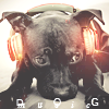 PSD icon Music DOG